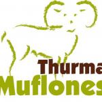 Piensos Thurma para muflones, acelera el crecimiento del cuerno