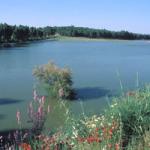 Medio Ambiente abre el trámite de información pública para la declaración de nuevas Zonas Especiales de Conservación