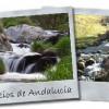 Andalucía: Medio Ambiente convoca una nueva edición del programa de voluntariado en conservación de ríos andaluces