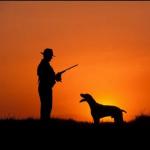 Andalucía: Medio Ambiente convoca la oferta pública para la adjudicación de los permisos de caza de la temporada 2014-2015