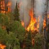 Extremadura: El día 19 de mayo comienza la época de peligro medio de incendios forestales