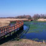 La UNESCO aprueba la ampliación de las Reservas de la Biosfera de la Mancha Húmeda (Castilla-La Mancha) y la de Montseny (Cataluña)