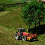 El Consejo de Ministros aprueba el reparto de 83.436.657 euros entre las Comunidades Autónomas para programas de Desarrollo Rural