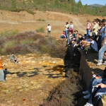 Andalucía: La Junta oferta 515 plazas de formación en el sector medioambiental para promover el empleo estable y de calidad