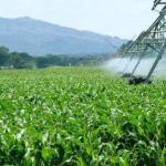 Extremadura: La Consejería de Agricultura organiza dos cursos online para la formación de asesores de explotaciones agrarias