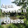 La Asociación Nacional de Empresas Forestales imparte cursos sobre agua forestal