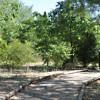 Andalucía: El Consejo declara 45 zonas especiales de conservación de la red europea Natura 2000 en seis provincias