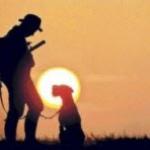 Fijadas las fechas de caza para la próxima media veda en Castilla y León