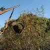 El Gobierno autoriza el convenio de colaboración destinado al establecimiento de las licencias interautonómicas de caza para 8 CCAA
