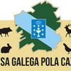 Hoy 29 de agosto arranca la temporada 2015/16 de caza mayor en Galicia