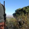 Castilla y León lidera la expedición de licencias interautonómicas de caza y pesca