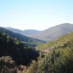 La Junta de Andalucía pone en marcha el Plan de Inspección y Control Medioambiental para el año 2016