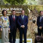 Andalucía: Medio Ambiente cede dos ejemplares de lince ibérico al zoo Aquarium de Madrid para fines educativos