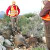 Hacienda inicia en la Comunitat Valenciana una investigación por fraude fiscal en la caza mayor