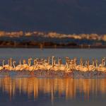 España es el primer país del mundo en número de Reservas de la Biosfera declaradas por la UNESCO