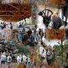 """La excursión didáctica """"Aquellos viejos oficios del monte"""" recorrerá los parajes donde se desarrollaban las actividades forestales tradicionales en los montes de Valsaín"""
