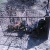 Se capturarán jabalíes con jaulas en Monfragüe para frenar la tuberculosis