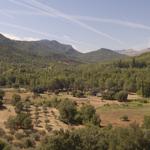 Nace la primera asociación de jóvenes cazadores aragoneses