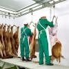 Entra en vigor la segunda Extensión de Norma de la Asociación Interprofesional de la Carne de Caza Silvestre