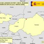 Hungría declara su primer foco de Peste Porcina Africana en jabalíes
