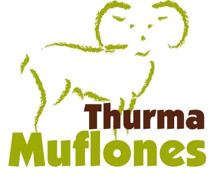 Muflones