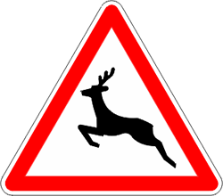 señal animales