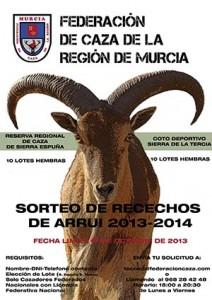SORTEO_RESERVA_TERCIA_NACIONAL_FCR_2013_2014