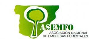 asenfo