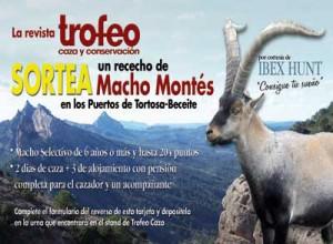 Sorteo-Macho-para-gestionjp