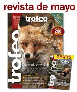 mayo_noticia