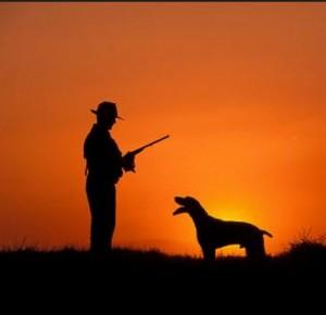 permisos caza