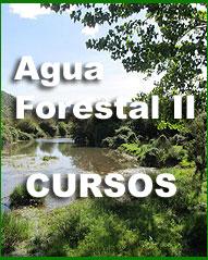 banner_aguaforestal2 (1)