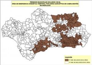 andalucia_emergencia