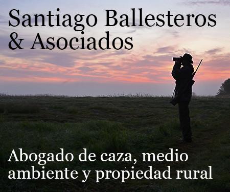 santiago ballesteros