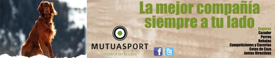 SEGUROS MUTUASPORT