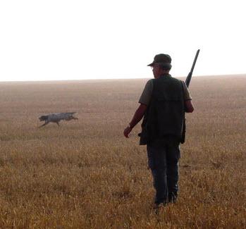 cazador examen