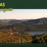 Compra-venta de fincas de dehesas ganaderas, de olivar, de caza, etc....