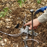 Aproca organiza un Curso de Especialista en Control de Especies cinegéticas depredadoras del 8 al 10 de septiembre