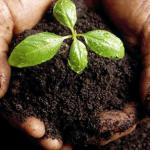 La Comisión Europea aprueba el Marco Nacional de Desarrollo Rural de España para el periodo 2014 – 2020