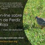 Ciencia y caza organiza un curso online sobre Gestión Integral de Perdiz en Terrenos Cinegéticos