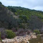 El 87% de la superficie de España es terreno de caza